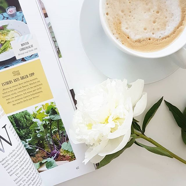 Ich sitze noch in der Arbeit und warte sehnsüchtig auf das Wochenende. Das ist dringend notwendig um Energie aufzuladen und mich auch ein bisschen um den Blog zu kümmern. Ich hab ein paar ganz tolle Buchtipps auf Lager und brauche eigentlich nur mehr Zeit, um euch davon auch erzählen zu können. Startet gut ins Wochenende. ☀️😊 Und welche Bücher könnt ihr gerade besonders empfehlen? . . #wochenende #endlichfreitag #blumen #kaffee #buch #buchtipps #buchtippsgesucht #dieliebezudenbüchern #diepetzi