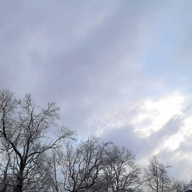 Falls jemand den Winter sucht, der ist hier. Vorhin kamen richtig dicke Flocken vom Himmel. 😍 Auch wenn ich nicht #teamwinter bin, so find ich trotzdem, dass das im Dezember einfach sein muss. 😉 #winter #momente
