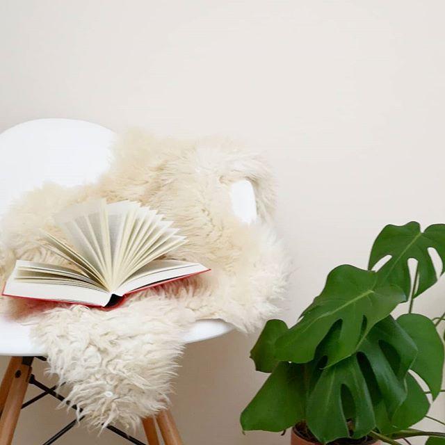 Seid ihr noch auf der Suche nach buchigen Geschenken zu Weihnachten? Auf dem Blog ging die letzten Tage der erste Teil des #geschenkeguide s online. Dort findet ihr z.B. Kochbücher und tolle Reisebildbände. Die nächsten Tage folgt dann der 2. Teil. Verschenkt ihr Bücher zu Weihnachten? Habt ihr schon alle Geschenke? 🎁😊 #buch #geschenkideen #geschenke #dieliebezudenbüchern #diepetzi