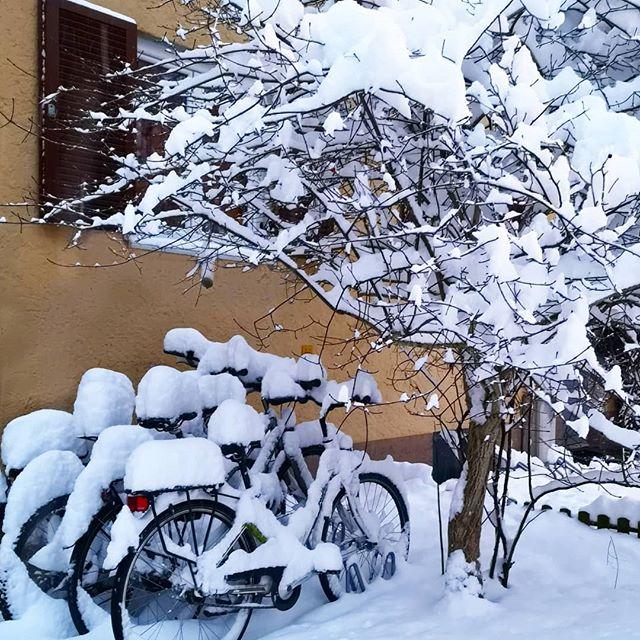 Überall Schnee. Bei euch auch? Seid ihr eher Team Winter ❄️ oder freut ihr euch doch schon auf den Frühling? 🌷 Ich find so ein wenig Schnee ja ganz schön, auch wenn ich ganz ehrlich eher für Frühling/Sommer bin. Über die Bahn könnt ich mich zwar auch aufregen, aber die geht ja nicht nur im Winter nicht. 😂 Habt einen tollen Tag, immerhin schon Donnerstag. Ich bin jetzt dann mal in Pause und les ein paar Seiten. Beste Entspannung überhaupt. 😊 #schnee #winterwonderland #hellosnow #munich #münchen #diepetzi