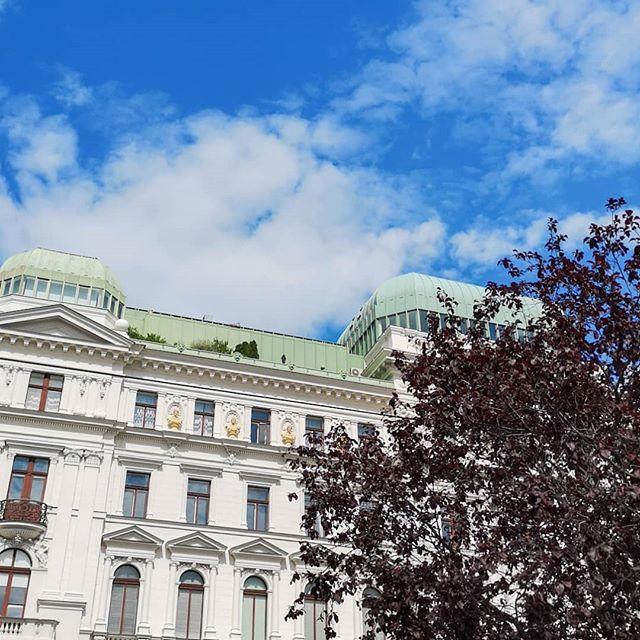 Ich bin zum ersten Mal in #Wien und ich wusste schon vorher, dass ich die Stadt mögen würde. Wien, du warst heute wunderbar! So viele schöne Orte und tolle Architektur. Bevor ich jetzt unglaublich müde ins Bett falle, habe ich euch ein paar erste Eindrücke in die Story gepostet. Mehr folgt. Jetzt muss ich erst einmal schlafen. . #wien #vienna #viennaiscalling #wiendubistwunderbar #explore #neverstopexploring #diepetziunterwegs #diepetzi #liebe #architektur #städtetrip #unterwegsinwien #austria #österreich